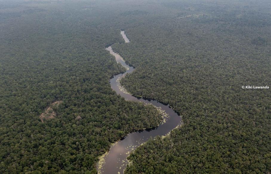ESI Congo et le projet de Création de Complexe d'Aires protégées Conkouati–Dimonika (PCCD)